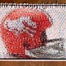 Amazing Denver Broncos 1966 Helmet Montage 1 of only 25