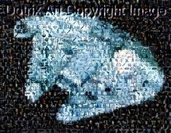 Amazing Millennium Falcon Star Wars Montage signed COA 1-25