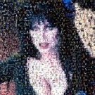 Amazing Elvira Mistress of the Night Monster Montage