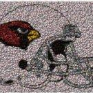 Best Bar Game Room Arizona Cardinals Sign framed w/COA