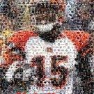 Amazing Cincinnati Bengals Chris Henry Montage #d w/COA