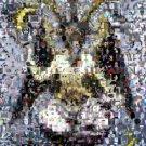 Amazing Baphomet Scary Weird Stuff Montage # to 25 COA