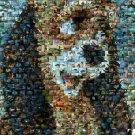 Amazing Disney The Fox and the HOUND Dog scene montage