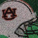 Auburn U Best Bar Game Dorm Room Sign EVER framed w/COA
