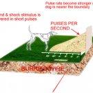 INground electric dog fence system BIG dog training