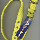 yellow one inch wide Hamilton dog collar with metal buckle for size 24-27 inch neck