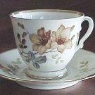 KPM Kobenhavns porcellains maleri #41 GERMAN Antique Teacup Tea Cup and Saucer FREE SHIPPING