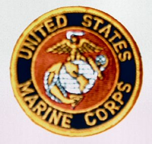 "UNITED STATES MARINE CORPS USMC 3"" Round Military Patch (silver globe)"