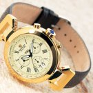 Steinhausen TW-482G Swiss Design Watch (Gold)