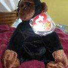 Congo Gorilla Ty Beanie Baby
