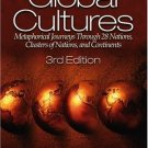 Understanding Global Cultures 3rd by Martin J. Gannon 0761929800