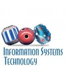 Information Systems Technology by Ross A. Malaga 0130497509