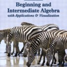 Beginning and Intermediate Algebra by Gary K. Rockswold 0321158911