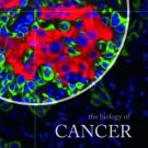 The Biology of Cancer HB by Robert A. Weinberg  0815340788
