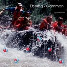 General Chemistry 8th edition by Darrell Ebbing 0618548602