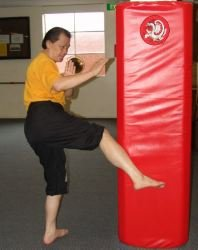 Iron Shin Training Course
