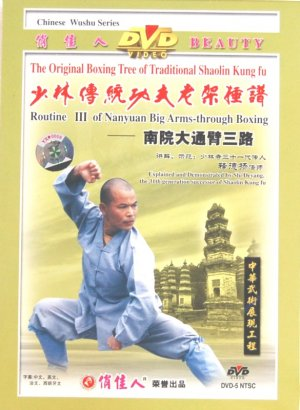 Shaolin NanYuan #3
