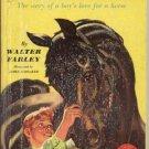 Big Black Stallion HORSE~Early Reader~Walter Farley~HB