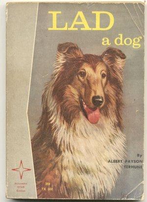 Lad A Dog~Albert Terhune~COLLIE~Sam Savitt~Vintage