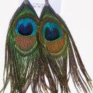Peacock Feather Earrings