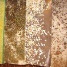 Large 12 lb Handmade Natural Olive Oil Lemongrass Soap Wholesale