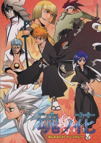 Bleach Doujinshi Anthology