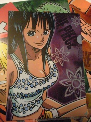 One Piece File Folder: Robin