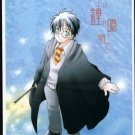 Harry Potter Doujinshi - Riddle / Harry / Ginny
