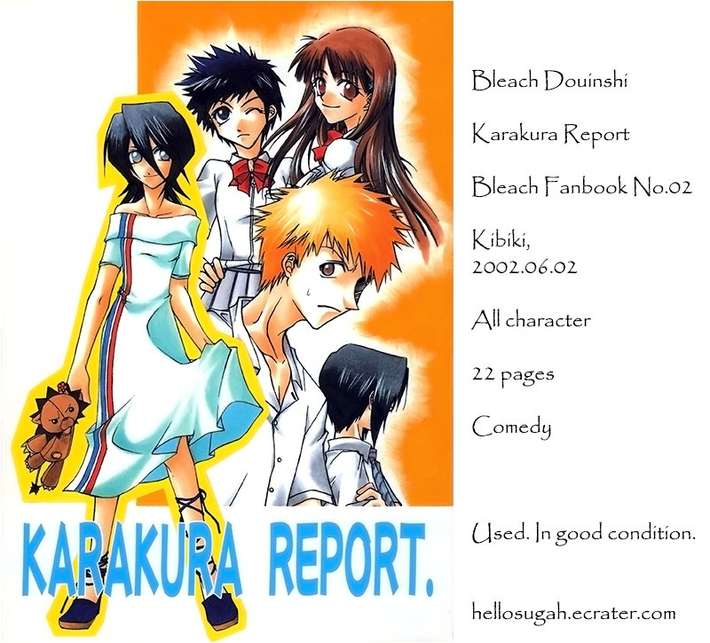 [033] Bleach Doujinshi - Karakura Report