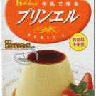 Japan imported PURIN L Homemade Pudding Mix with Caramel