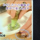 Japanese Wasabi Ginger Grater Freshly Grounded Seasoning spice kit Oroshigane