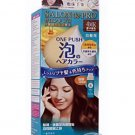 Japan Dariya Salon de Pro Foam Type Hair Color Kit # 4 Light Brown