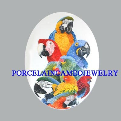 SCARLET MACAW PARROT BIRD COLLAGE * UNSET CAMEO PORCELAIN CABOCHON