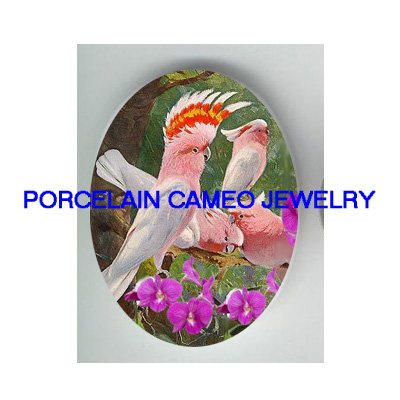 MOLUCCAN COCKATOO BIRD COLLAGE ORCHID PORCELAIN CAMEO 18X25MM