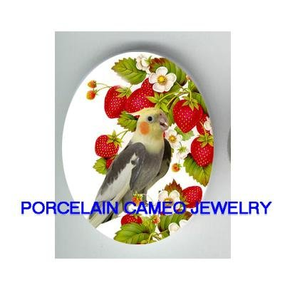 COCKATOO BIRD EATS STRAWBERRY* UNSET CAMEO PORCELAIN CABOCHON