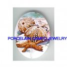 STARFISH AND SEASHELL * UNSET CAMEO PORCELAIN CABOCHON