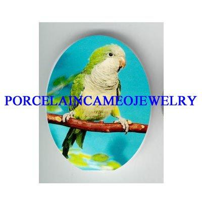 BABY PARAKEET BUDGIE BIRD  * UNSET CAMEO PORCELAIN CAB 18X25