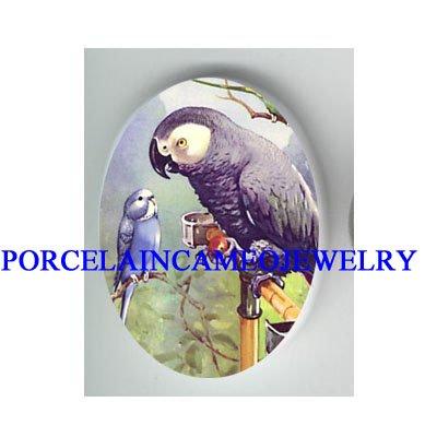 AFRICAN GREY PARROT TALKING TO BABY PARAKEET BUDGIE BIRD  * UNSET CAMEO PORCELAIN CAB 18X25