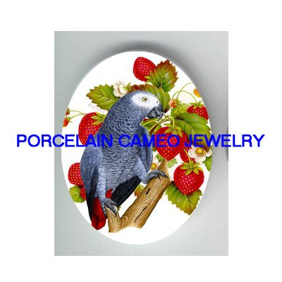 AFRICAN GREY PARROT EAT STRAWBERRY PORCELAIN CAMEO 1825
