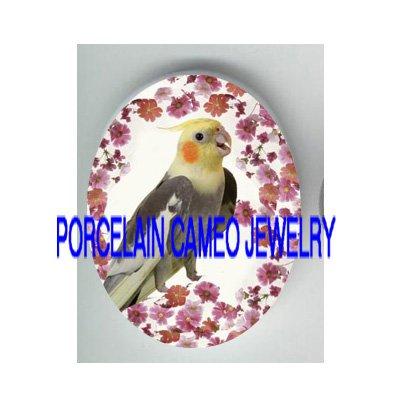 COCKATIEL BIRD WITH DAISY PORCELAIN CAMEO CAB 18X25MM