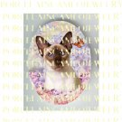 BLUE EYES SIAMESE CAT CHASING BUTTERFLY LILACS ROSE * UNSET PORCELAIN CAMEO CAB
