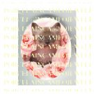 KITTY CAT WITH PINK ROSE* UNSET PORCELAIN CAMEO CAB