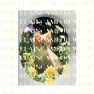 GINGER KITTY CAT FLOWER GARDEN* UNSET PORCELAIN CAMEO CABOCHON