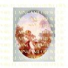 VICTORIAN  ANGEL CHERUB DOVE BIRD PORCELAIN CAMEO CABOCHON