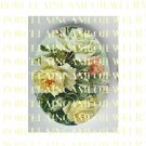 VICTORIAN VINTAGE YELLOW WHITE ROSE  * UNSET PORCELAIN CAMEO CAB