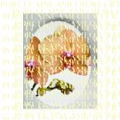 RARE GOLDEN ORCHID FLOWER* UNSET PORCELAIN CAMEO CAB