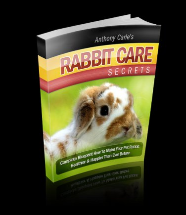 �The Ultimate Guide for Rabbit Care�: