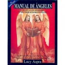 Manual De Los Angeles Vol 1  - Lucy Aspra - isbn 970922090X