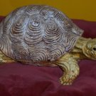 Collectable Heavy Resin Hand Painted Turtle Figurine FREE SHIP