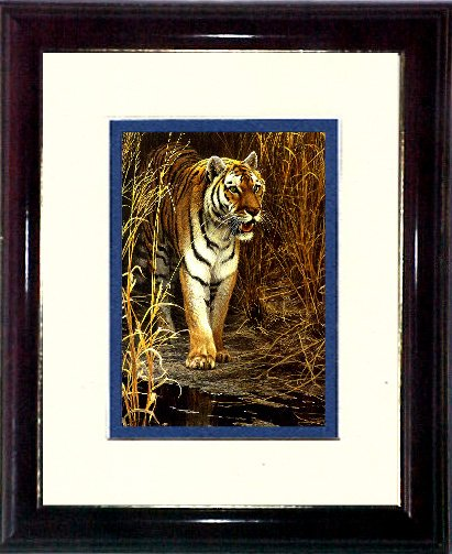 THE TIGER #A472